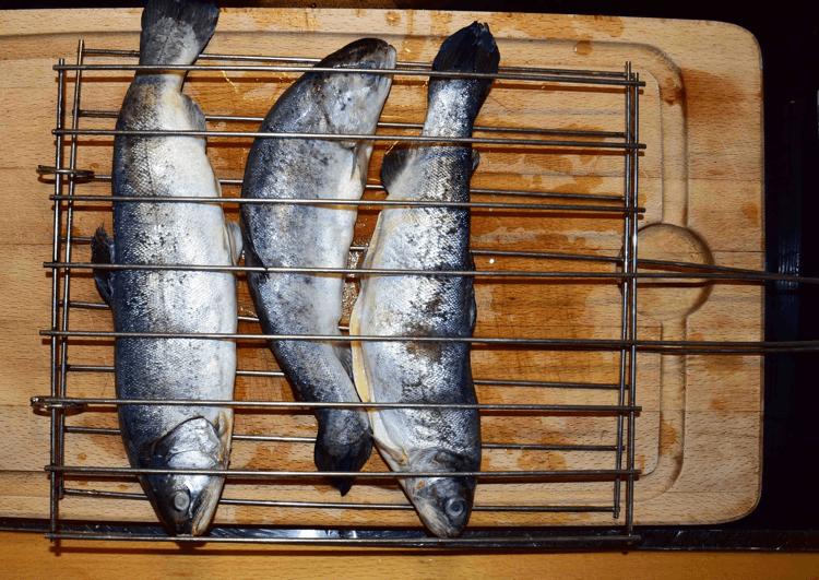 Forelle-zum-Raeuchern