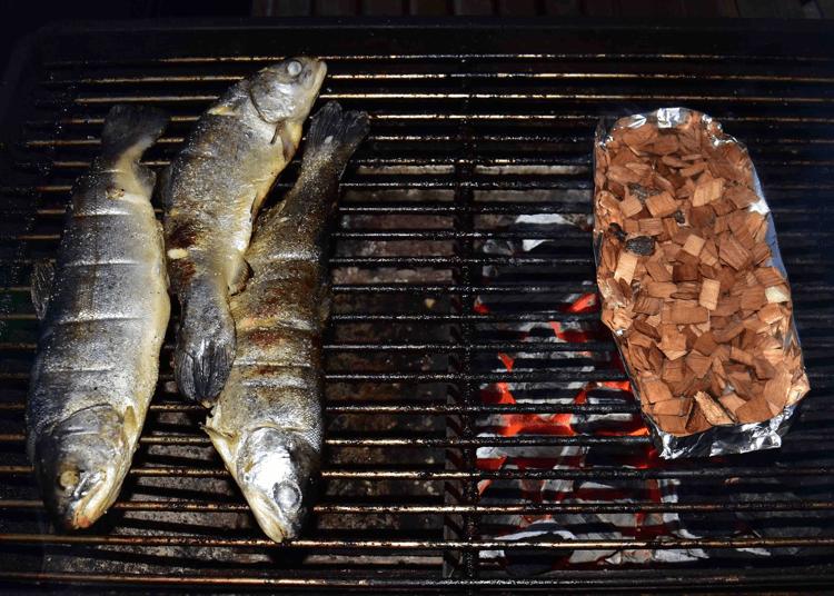 Forelle-auf-Grill-raeuchern-mit-Buchenchips